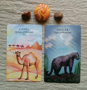 Camel, Seeker of Branches & Jaguar, Eight of Branches (Animal Wisdom Tarot by Dawn Brunke & Ola Liola, CICO Books copyright 2013)