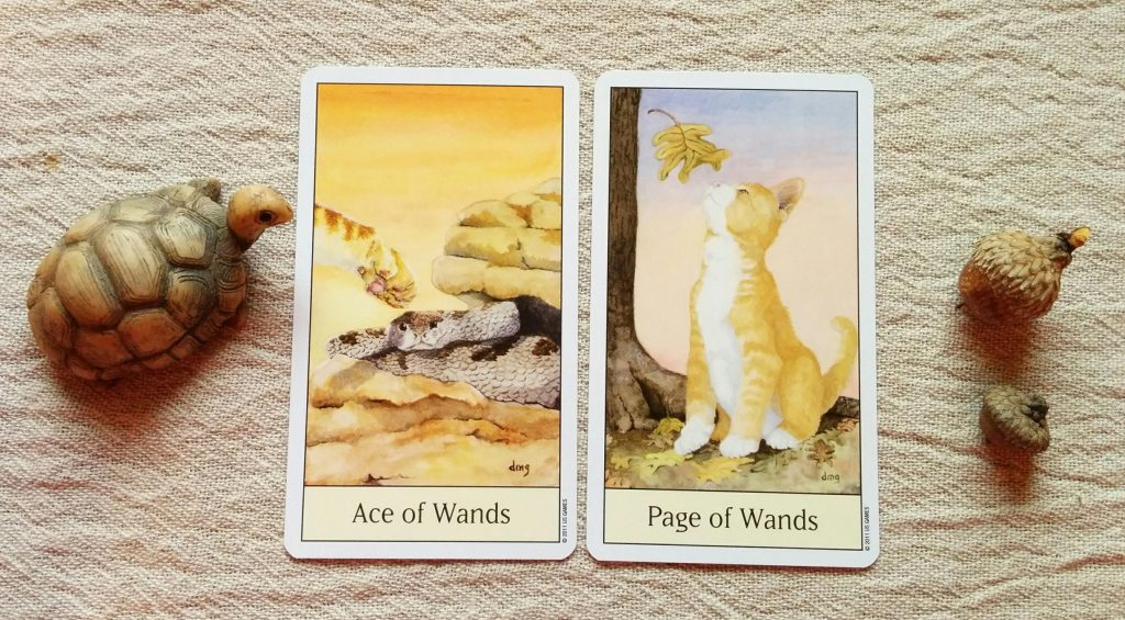 Ace of Wands & Page of Wands (Cat's Eye Tarot by Debra M. Givin, U.S. Games copyright 2011)